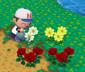 player character looking at flowers